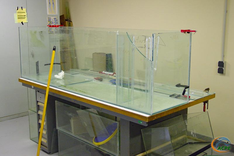 Janvier 2002, rénovation du 600 litres, qui sera implanté dans la salle d'activités