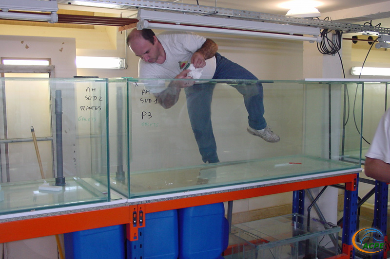 28 août 2002, Gabriel fait l'acrobate pour finaliser la descente d'eau d'un bac amazonien
