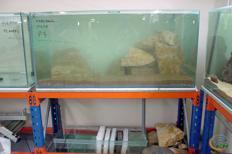Le bac Victoria, mis en eau le 4 septembre 2002