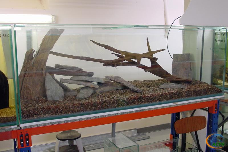 10 novembre 2002, l'aquarium d'Afrique fluviale en service