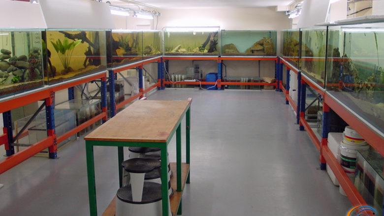 La salle d'exposition en service et toute propre