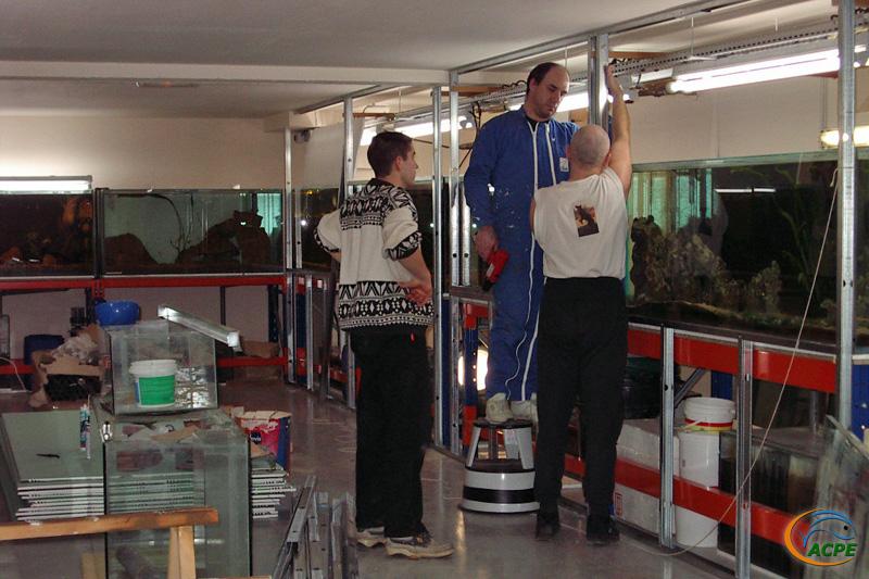 16 février 2003, mise en place des ossatures métalliques sur le coté droit de la salle