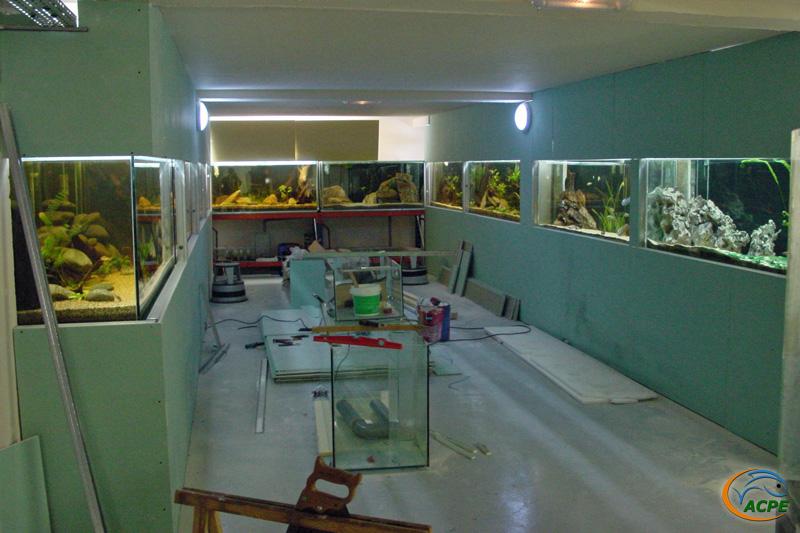 27 février 2003, la salle d'exposition prend forme