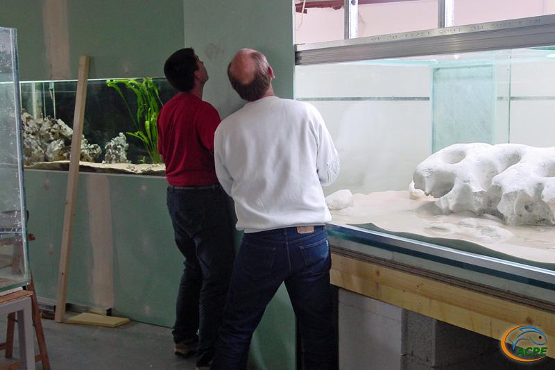15 mai 2003, pose de la première plaque de plâtre sur l'aquarium de 3000 litres