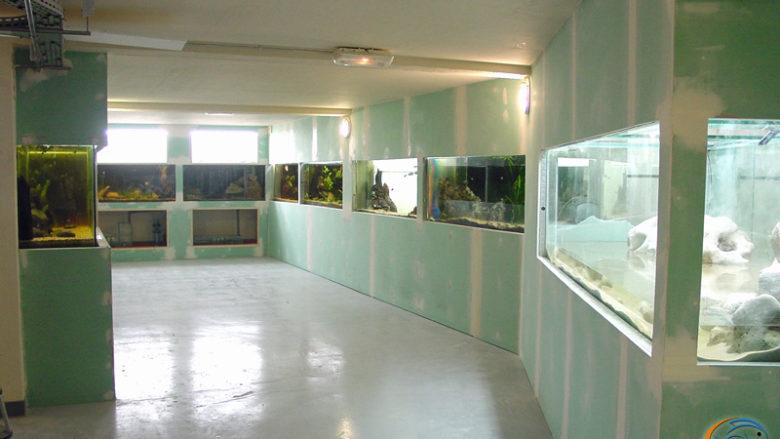 11 juin 2003, la salle d'exposition bien nettoyée avant d'attaquer les dernières finitions