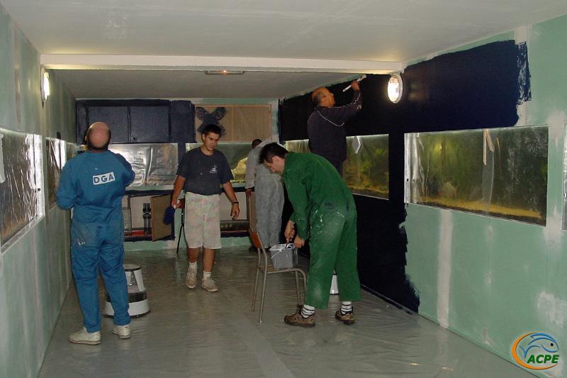 16 juillet 2003, réalisation de la peinture sur les habillage des aquariums d'exposition