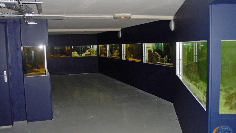 23 juillet 2003, les travaux de peinture sont terminé et la salle d'expo a belle allure