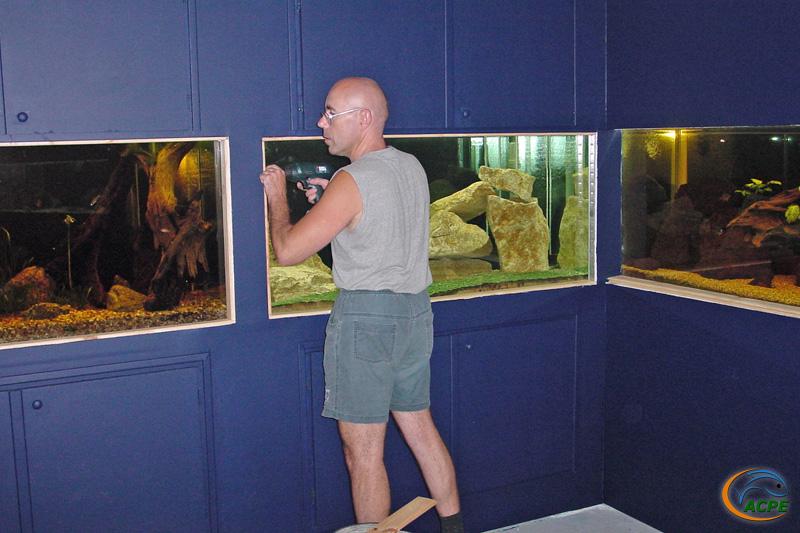 Les encadrements d'aquariums apporteront la touche finale