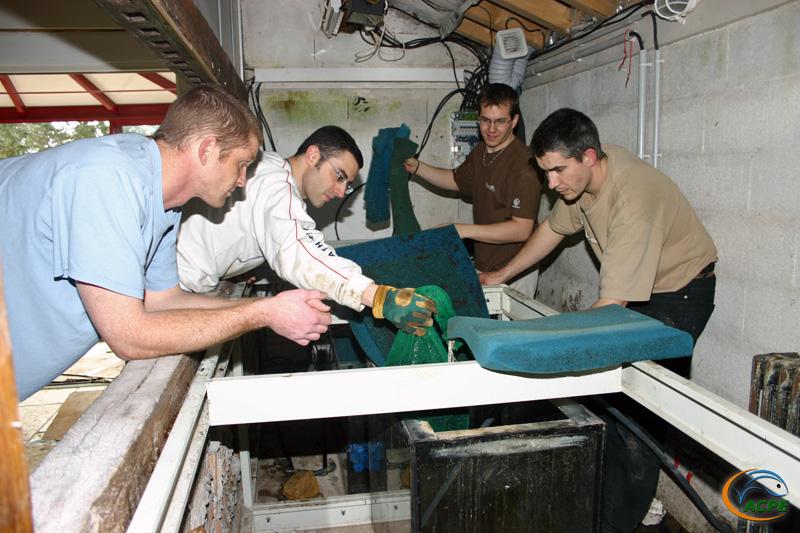 5 avril 2008, récupération d'un aquarium de 3000 litres
