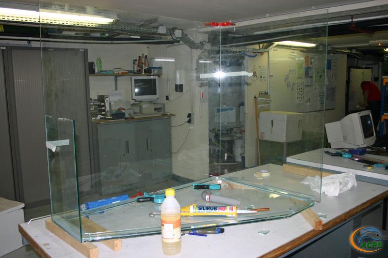 3 janvier 2007, la cuve du future aquaterrarium