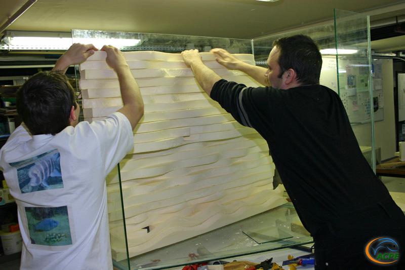 21 mars 2007, réalisation d'un décors artificiel pour l'aquaterrarium