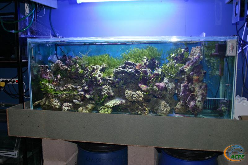 17 juin 2007, sortie découverte à l'Aquaclub de Trouville