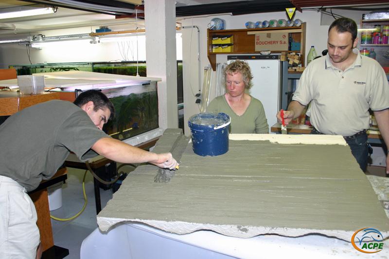 11 juillet 2007, réalisation d'un décors artificiel pour l'aquaterrarium