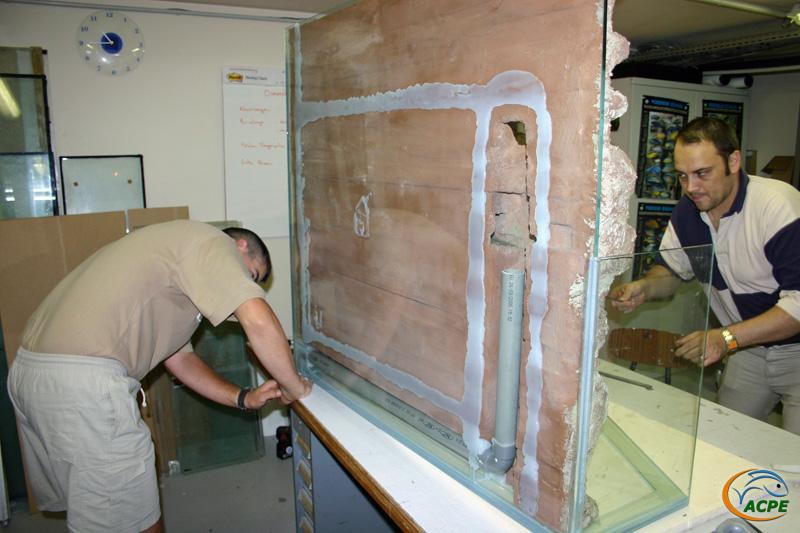 18 juillet 2007, réalisation d'un décors artificiel pour l'aquaterrarium