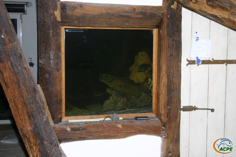 30 janvier 2008, découverte d'une bel aquarium de 3000 litres