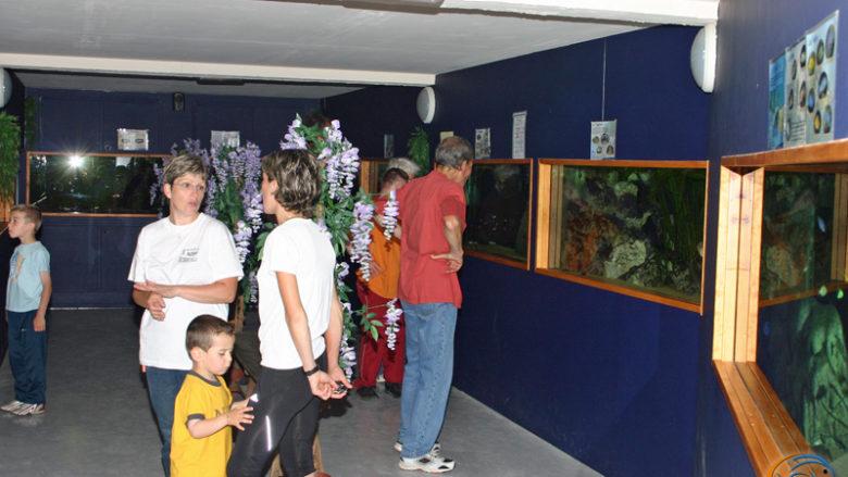 1er juin 2008, Dimanche à la carte à Vernon