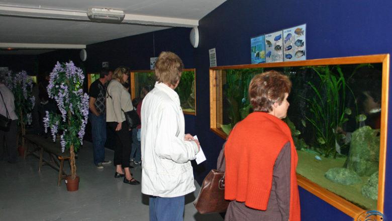 13 et 14 septembre 2008, portes ouvertes