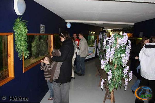 6 et 7 décembre 2008, participation du club au Téléthon
