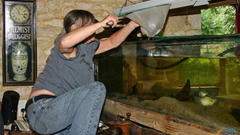 20 et 21 juin 2009, voyage au Pech Marty