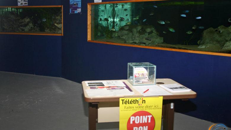 6 décembre 2009, participation au Téléthon
