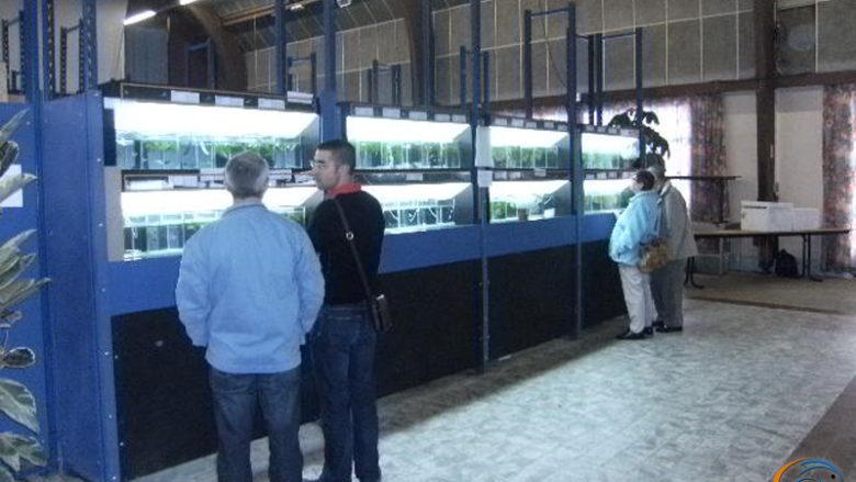 2 septembre 2010, rencontres aquariophiles à Pont l'Evêque