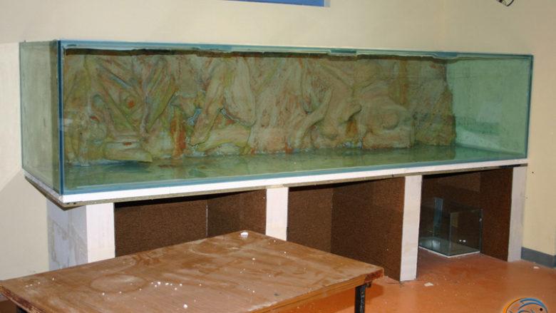 11 mars 2010, le 3000 litres en place dans la salle d'activités