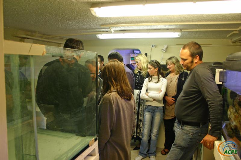 Déménagement dans la Fishroom de William, le 18 septembre 2010