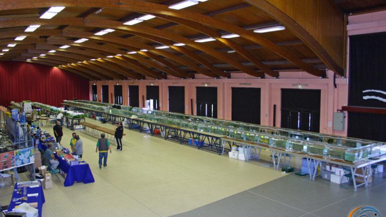Congrès AFC 2010