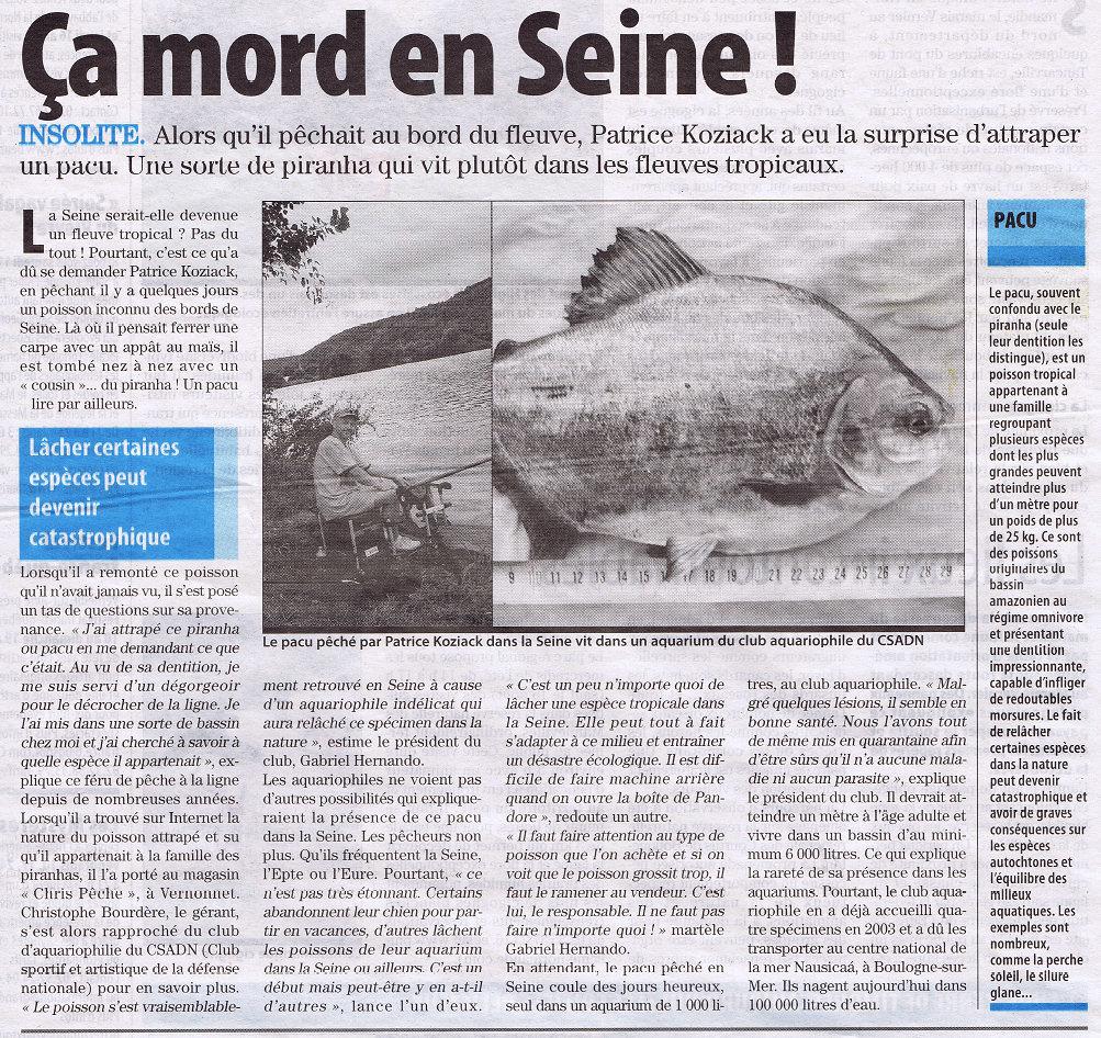 Paris Normandie du 7 août 2012 - Ca mord en Seine