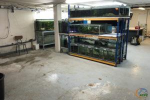 Mercredi 5 août, les deux ensembles de batteries prévus sont démantelés