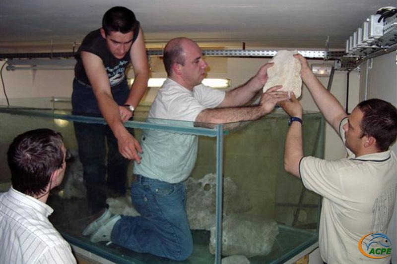 30 avril 2003, mise en place des petites pierres