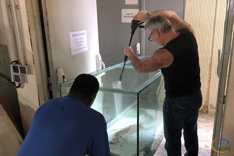 4 mars 2020 : Nettoyage du dernier aquarium