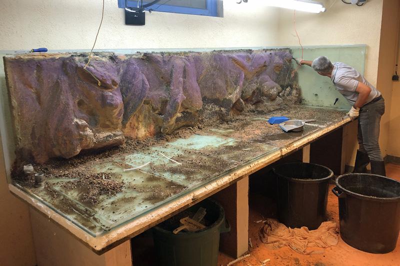 Démontage de l'aquarium de 3000 litres : décollage du coté gauche