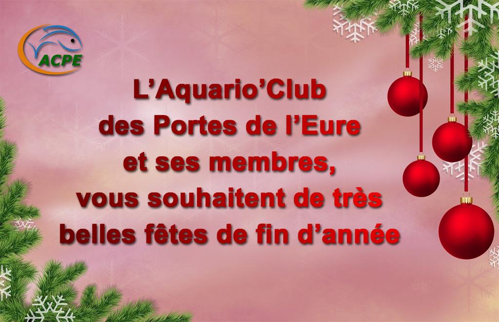 L'Aquario'Club des Portes de l'Eure et ses membres vous souhaitent de très belles fêtes de fin d'année
