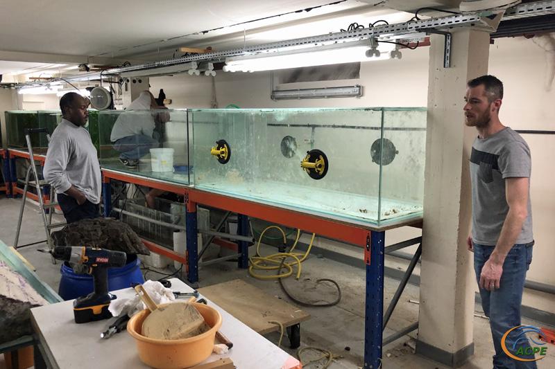 19 janvier 2020, le 1er aquarium prêt à être sorti pour nettoyage.