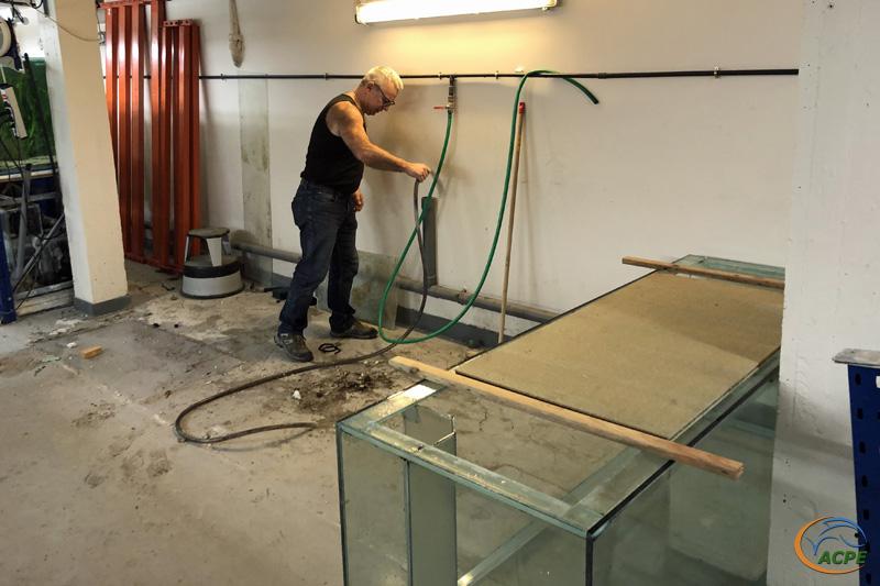 19 janvier 2020, nettoyage de la zone des 2 premiers aquariums
