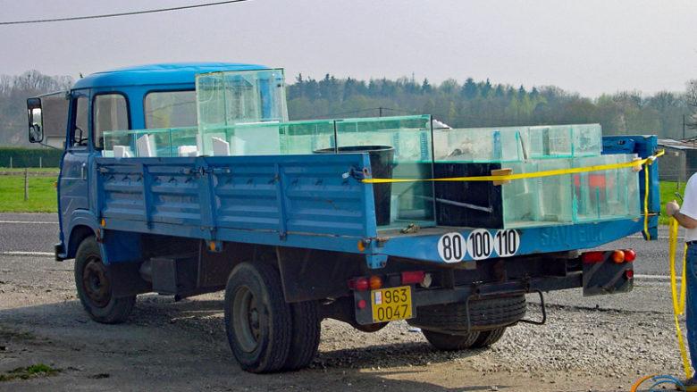 Le vieux Saviem du LRBA, chargé à bloc, avec 3 bacs de 1000 litres, 2 batteries d'environ 750 litres et quelques bacs de récup.